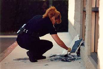 Crime Scene Investigation officer S. Shannon dusting a crime scene for latent prints. Burglars smashed a side window in order to obtain access into a closed business at Edinger and Goldenwest. The burglar(s) stole about $250 in petty cash left in the restaurant overnight.