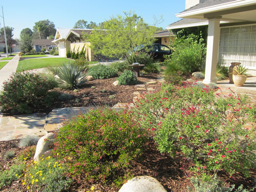 Beau Beautiful And Practical Low Water Use Garden