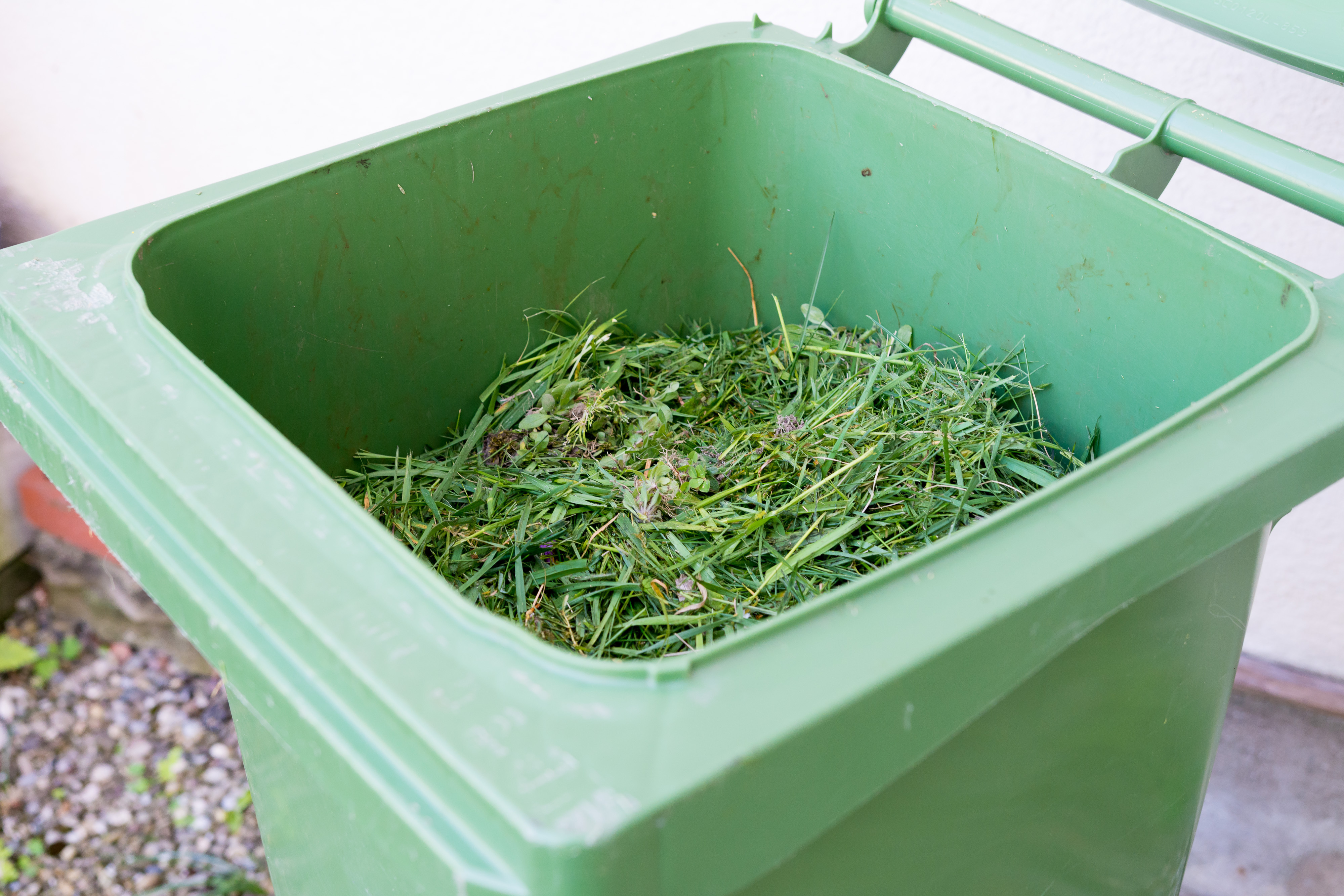 Using Green Dumpsters