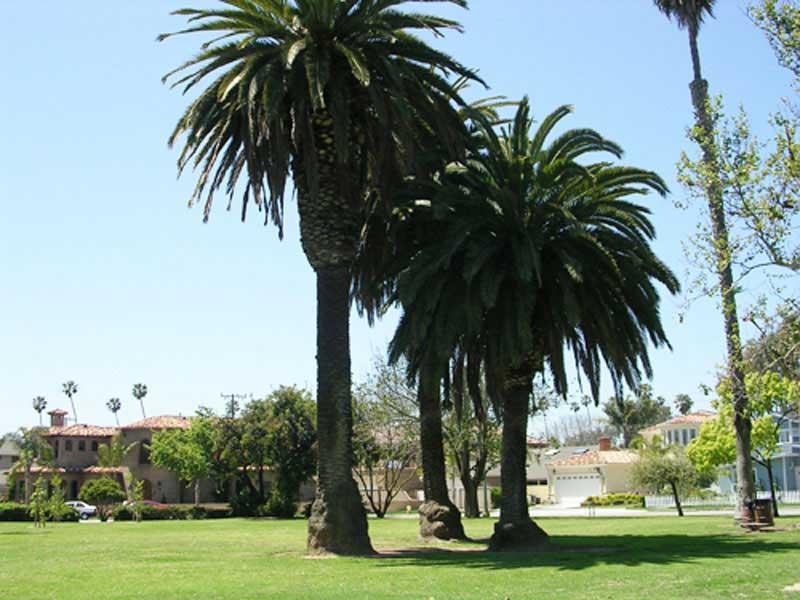 Farquhar Park Huntington Beach